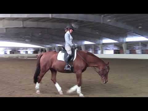 Art2Ride Associate Trainer Program: Allison and Contigo Full Training Session Part 3 Mounted Session