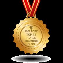 Art2Ride Selected By Feedspot As Top Horse Training Blog!!