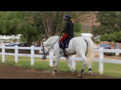 Art2Ride Lesson: Kristen & Contigo